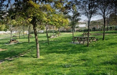 İstanbulluların Sadece 6 Metrekarelik Yeşil Alanı Var!