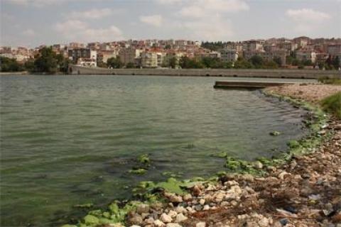Küçükçekmece Gölü'ndeki Kirliliğin Sebebi Belirlendi!