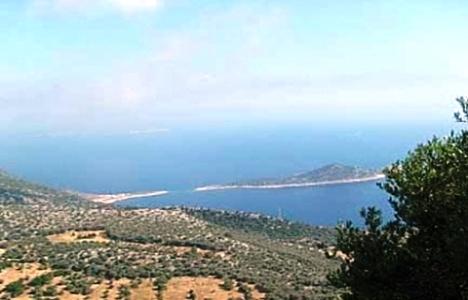 2B Arazilerine Başvurular Antalya'da 40 Bine Ulaştı!