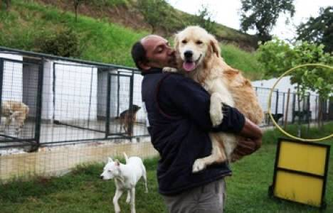 Samsun'da Köpekler İçin Dev Otel İnşa Edildi!