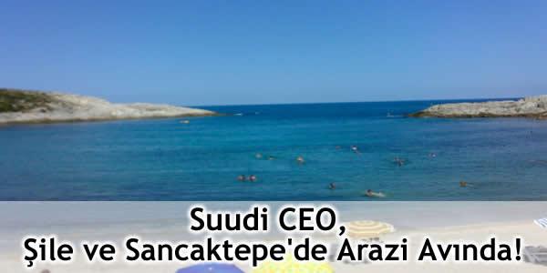 Suudi CEO, Şile ve Sancaktepe'de Arazi Avında!