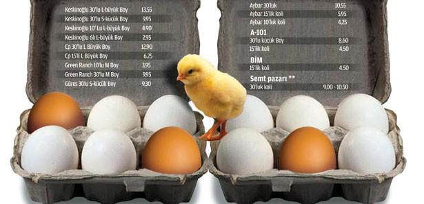 Tavuklar Sanki Altın Yumurtluyor