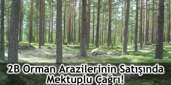 2B Orman Arazilerinin Satışında Mektuplu Çağrı!