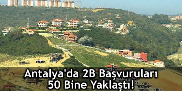 Antalya'da 2B Başvuruları 50 Bine Yaklaştı!