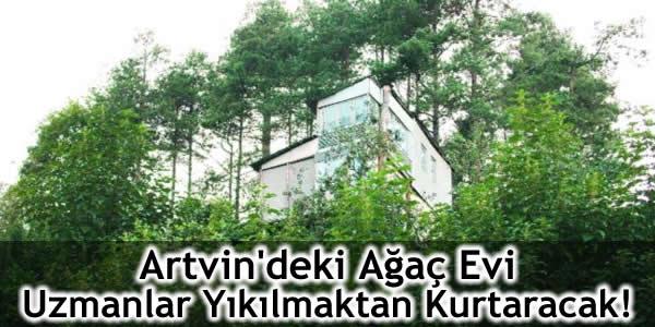 Artvin'deki Ağaç Evi Uzmanlar Yıkılmaktan Kurtaracak!