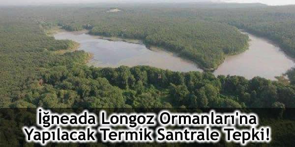 İğneada Longoz Ormanları'na Yapılacak Termik Santrale Tepki!