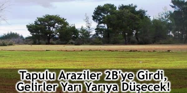 Tapulu Araziler 2B'ye Girdi, Gelirler Yarı Yarıya Düşecek!