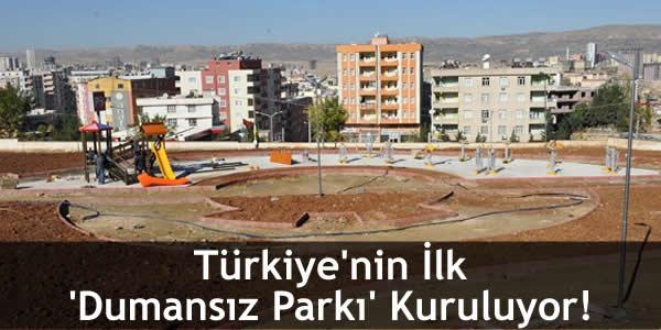 Türkiye'nin İlk 'Dumansız Parkı' Kuruluyor!