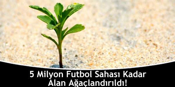 5 Milyon Futbol Sahası Kadar Alan Ağaçlandırıldı!