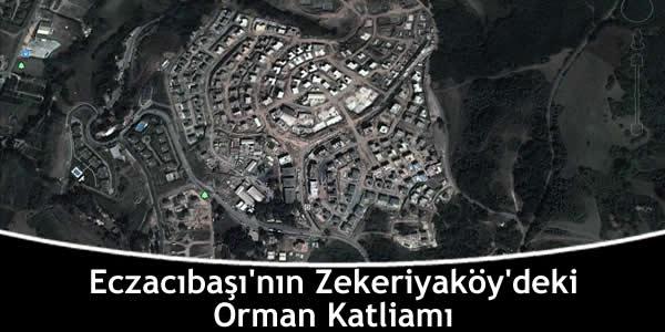 Eczacıbaşı'nın Zekeriyaköy'deki Orman Katliamı