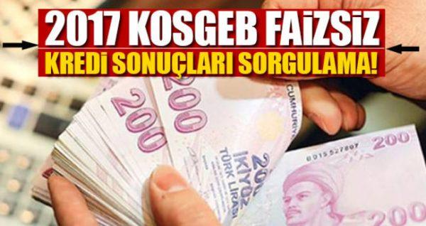 KOSGEB 50 Bin TL Faizsiz Kredi Sonuçları Bu Sayfada!