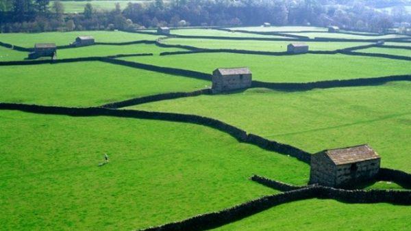 Akıllı Tarıma İngiliz Modeli Geliyor