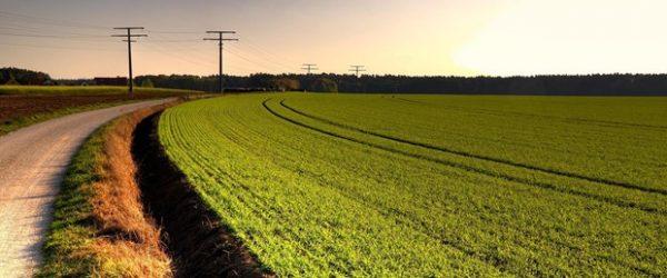 Fakıbaba'dan Tarımsal Destek Açıklaması: Bayrama Kadar 500 Milyon TL Daha Ödenecek